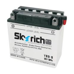 Аккумулятор Skyrich YB9-B