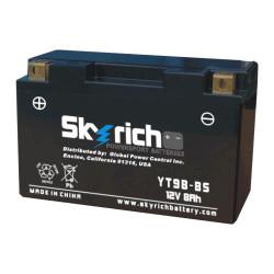 Аккумулятор Skyrich YT9B-BS