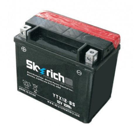 Аккумулятор Skyrich YTX12-BS