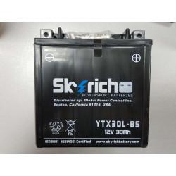 Аккумулятор Skyrich YIX30L-BS (YIX30L, YTX30L-BS)