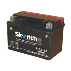 Аккумулятор Skyrich YTX9-BS