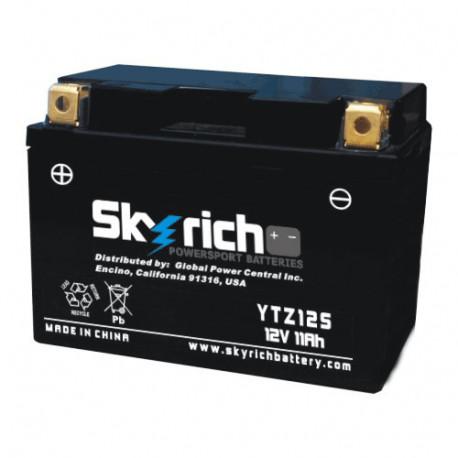 Аккумулятор Skyrich YTZ12S